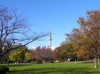20111204_004.jpg