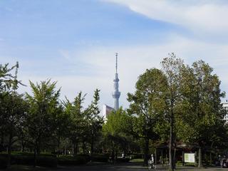 20121013_002.jpg