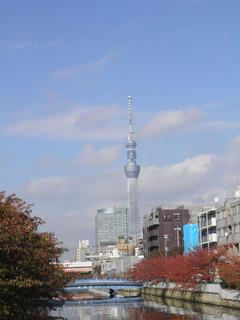 20111120_02.jpg