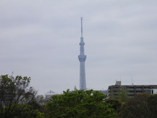 20120421_002.jpg