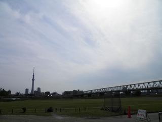 20120513_004.jpg