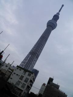 20121111_007.jpg