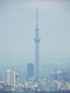 20121223_009.jpg