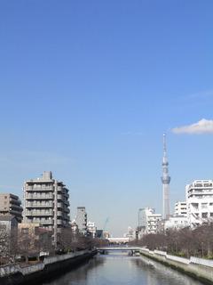 20130119_002.jpg