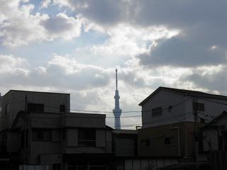 20131117_007.jpg
