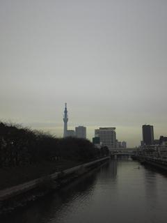 st20110115_135346.jpg